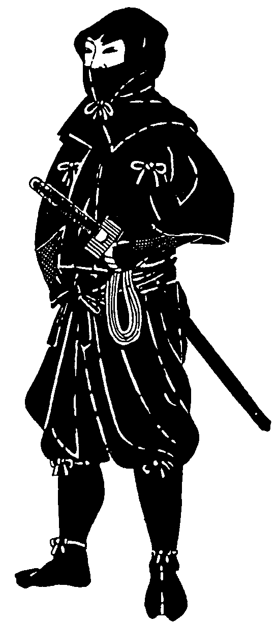 camouflage suit and armor Ninja